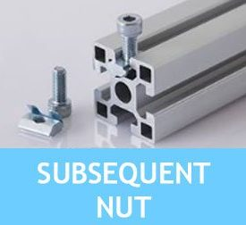 Subsequent Nut [2.31.x...]