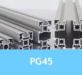 PG45 [1.11.45.x...]