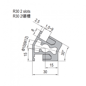 Clamping Profile PG30 R30 2 Clamping slots (1.21.30.030030.R30)