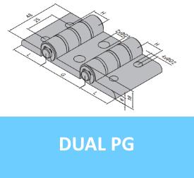 Dual PG