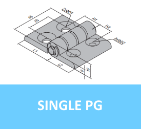 Single PG